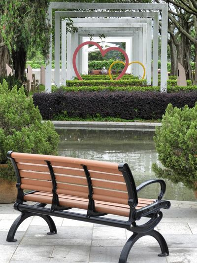 ❤️❤️Heart to heart ❤️❤️ Tree Park - Man Made Space Plant Architecture Park Bench Bench Formal Garden Seat