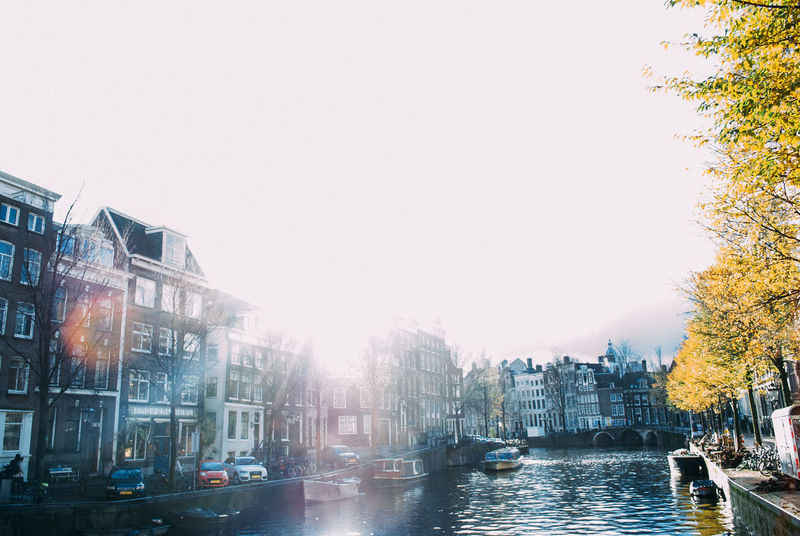 Amsterdam Amsterdam Architecture Building Building Exterior Built Structure Canal City City Life City Street Day Light Leak Nature Netherlands No People Outdoors Residential Building Residential District Sky Sun Sun Leak Tree Winter Sun