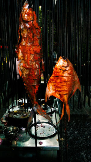 Fish Restaurant Indian Food Indianspices Spicey Barbeque Food Photography Color Of Red Dinner With Friends Hungry Yummy Food