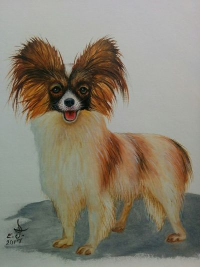 Papillon ,i thought i could bring a smile or two to your lovely faces so for that reason only iv'e decided to paint this gorgeous cute and playful puppy,enjoy my friends. Portrait One Animal Puppy Love ❤ Animal Themes My Animal Collection Pets My Art Collection Beauty Love♥ Art, Drawing, Creativity Fine Art Oil Painting ArtWork Drawing My Portrait Collection Fredom My Best Friends ❤ Original Art with My Bestfriend ❤