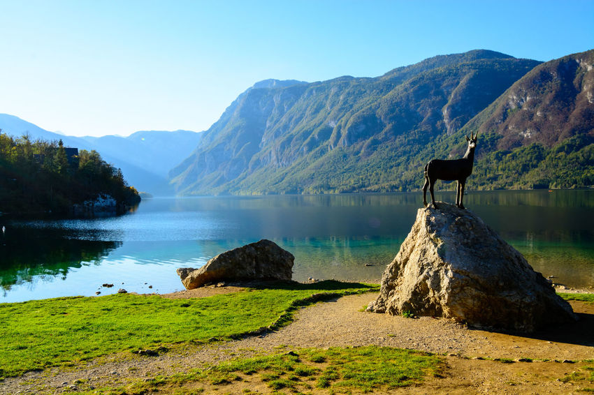 Nature Sky Day Bohinjsko Jezero Water Mountain Beauty In Nature Scenics - Nature Tranquil Scene Lake Tranquility Mountain Range Non-urban Scene No People Clear Sky Environment Idyllic Landscape Outdoors Remote