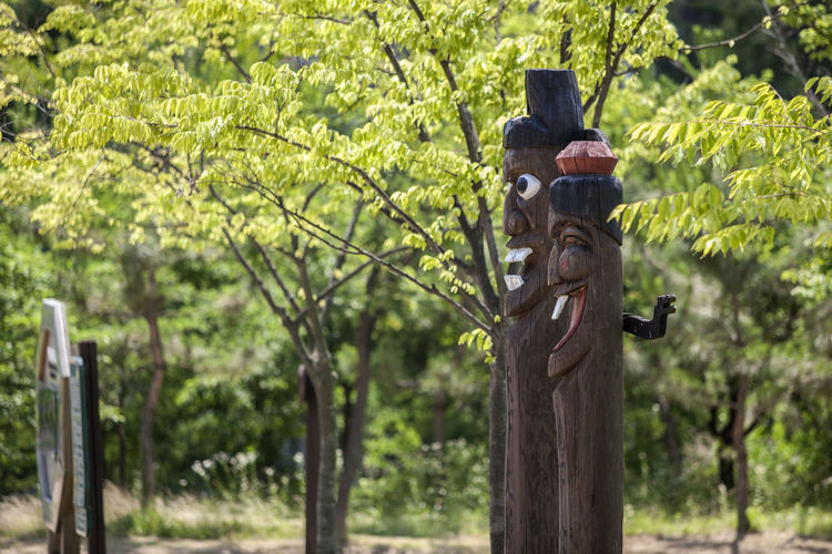 Beauty In Nature Close-up Day Focus On Foreground Green Color Growth Jangseung Korean Traditional Architecture Michuhol Park Nature No People Outdoors Park Parking Plant Pole Selective Focus Songdo, Incheon Tranquility Tree Tree Trunk