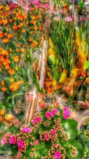 Flowerstand Upper East Side Manhattan