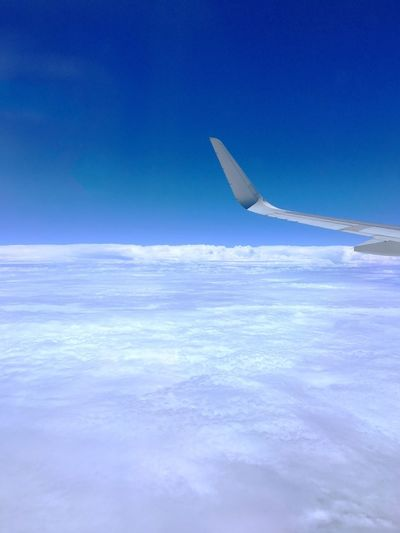 Cloud Carpet Clouds Carpet Airplane Airplane Wing Blue Transportation Sky Aerial View Nature Beauty In Nature Flying No People Air Vehicle Scenics Cloud - Sky Outdoors Day