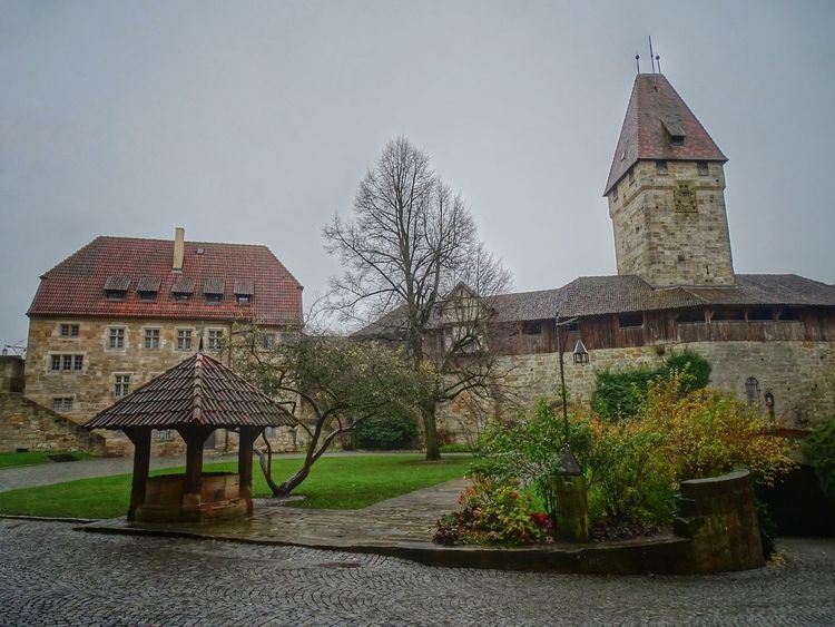 Veste Coburg / Castle Coburg Castle Castles Castle View  Castle Walls Fortress Fortress Wall Fortress In Europe Fortress View Fortress Of Stone Old Old Buildings Old Town Architecture Architecture_collection Architectural Detail Built Structure Building No People The Past Day History Historic Historical Building Historic Building Building Exterior Tree Plant Sky Nature Religion Belief Spirituality Clear Sky Place Of Worship Travel Destinations Outdoors