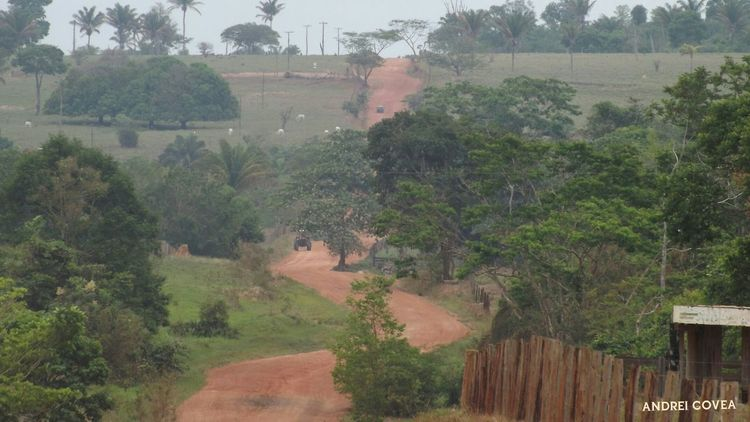 Série: um olhar sobre as paisagens - Matogrosso Mato Grosso Na Estrada Estradas Paisagens