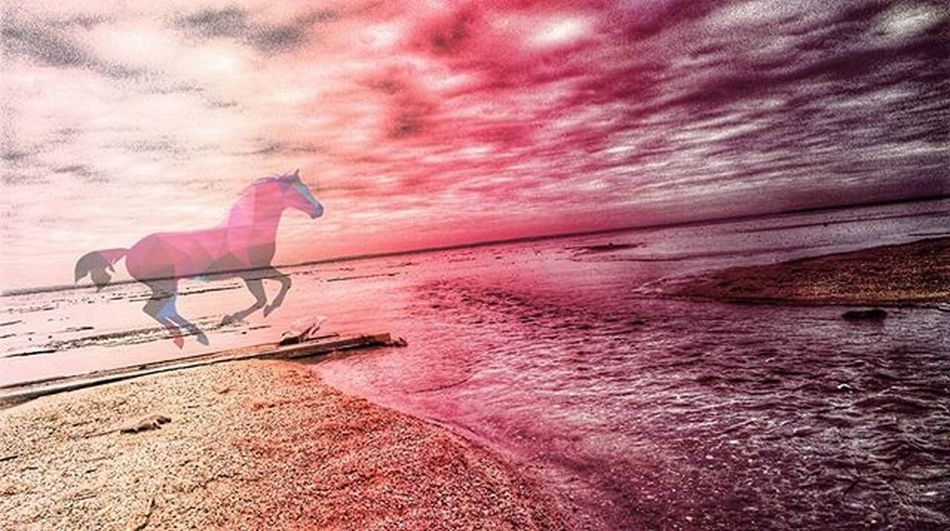 No words🌌 World ☁☁☁☁☁☁☁☁☁☁☁☁☁☁☁☁☁☁☁☁☁ Love Photo World Word Naroch Minsk Belarus Instagram Instaminsk Ilovemyfollowers Ilovebelarus Horse Beach Winter Snow Sweaterweather Autumn