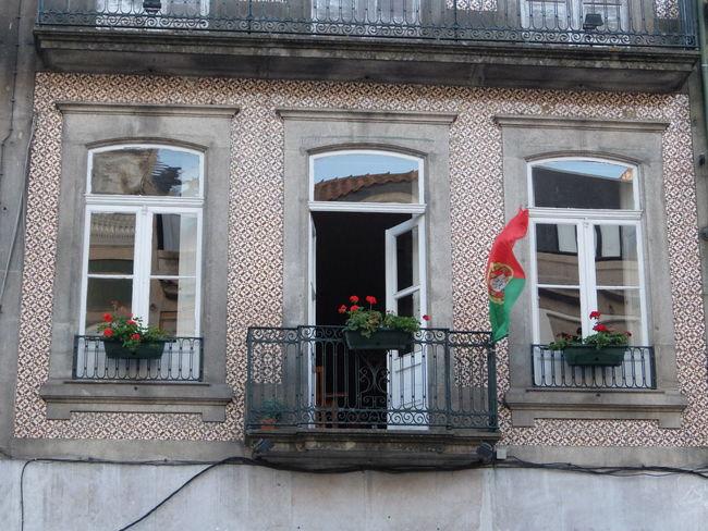 Euro 2016 Flag Green & Red Porto Portugal Windows