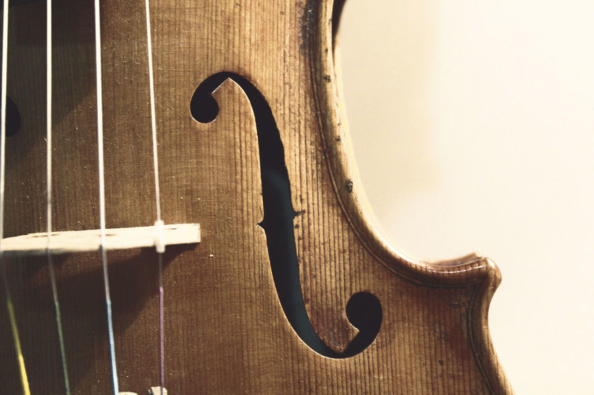 Violin details Classical Music Curl Music String The Week On EyeEm Wood Arts Culture And Entertainment Classical Music Close-up Day Detail Double Bass Indoors  Instrument Music Musical Instrument Musical Instrument String Musician No People String Instrument Violin Violin Curl Violin Strings Violinist Wood - Material