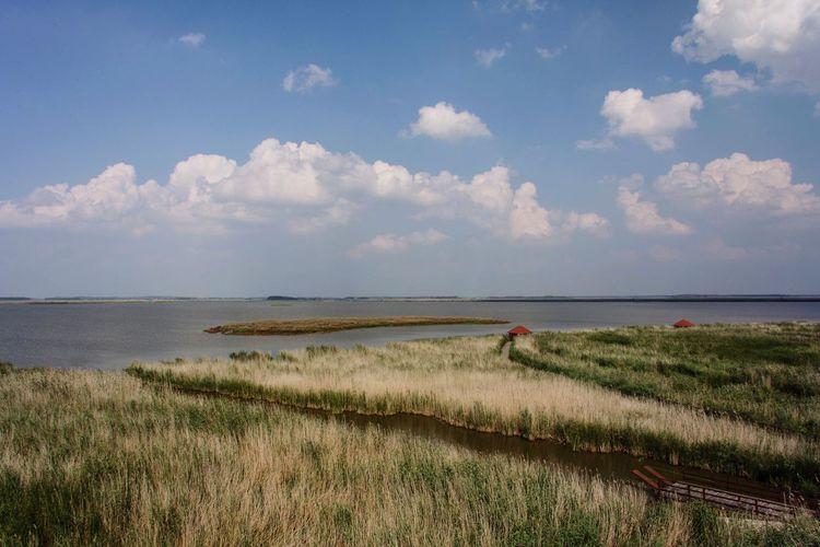 Puszta Nature EyeEm Nature Lover Hungary Beautiful Nature Lake Lake View