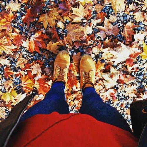 Step By  step Stepbystep Feet Autumn Novemberpic November Colours Colorful Timberland Photo Pic InstaPlace Instamoment Yellow Red Brown Love Cute Hello Picotheday Photooftheday Ciao Turin Torino