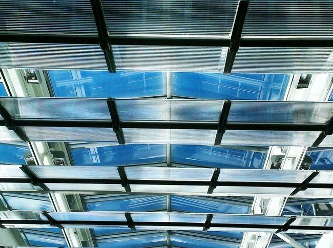 Looking up through the Window Light Skywindow Glass Cieling Topfloor Eyeemwindow