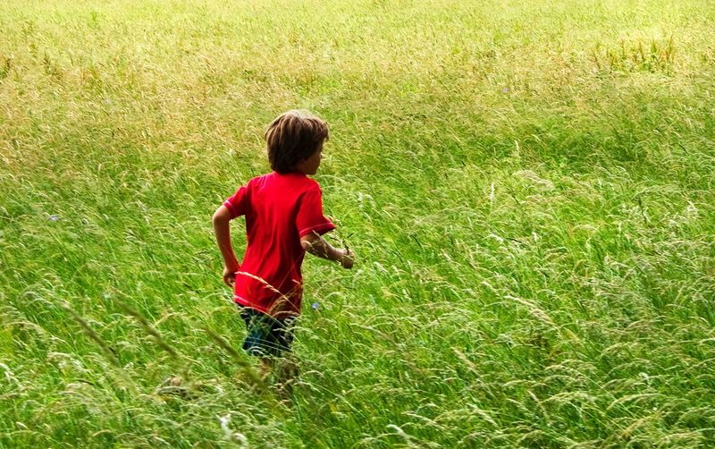 Just play Happiness Happy Running Child One Person Grass Childhood Real People Green Color Boys Nature Casual Clothing Day Outdoors Moments Of Happiness Red Green Color Grass Field Growth Grass Green Color Nature Red Leisure Activity