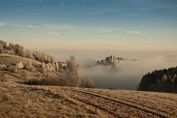 Misty morning Tranquil Scene Landscape Sky Mist Misty Morning Castle Mystic Fog Switzerland Zürich