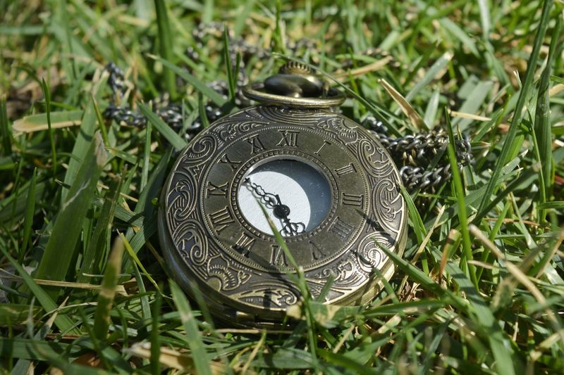 High angle view of pocket watch on grassy field