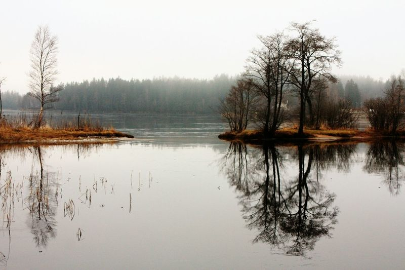 Reflection Tree Water Nature Lake Fog Landscape Outdoors Sky No People Beauty In Nature Reflection Lake Awareness Mindfulness Silence Bythelake Peaceful Moment Naturephotography Reflections In The Water Beauty In Nature Nature Reflection Peaceful Place Thin Ice Peace Of Mind