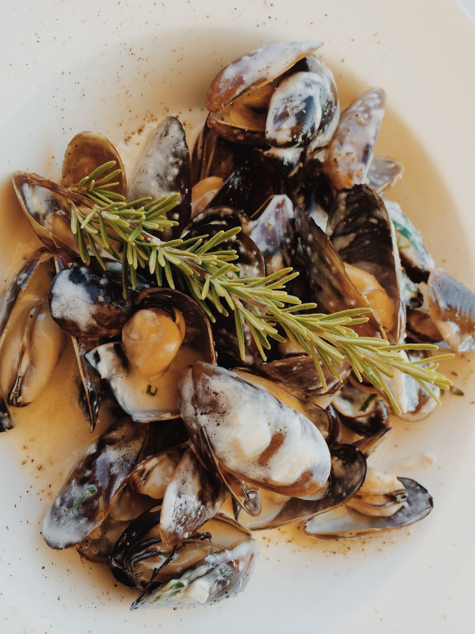 food and drink, seafood, food, freshness, indoors, wellbeing, healthy eating, plate, close-up, ready-to-eat, no people, still life, high angle view, serving size, herb, mussel, animal, shell, meal, crustacean, temptation