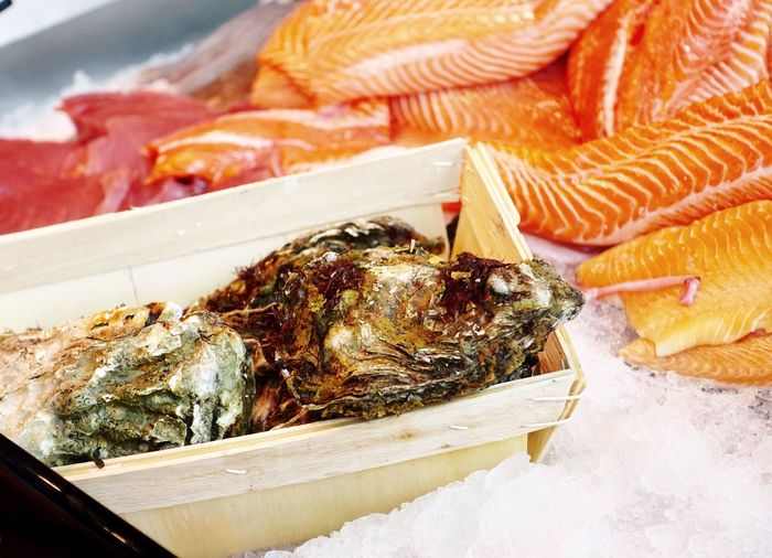 Oysters and salmon on ice at market for sale