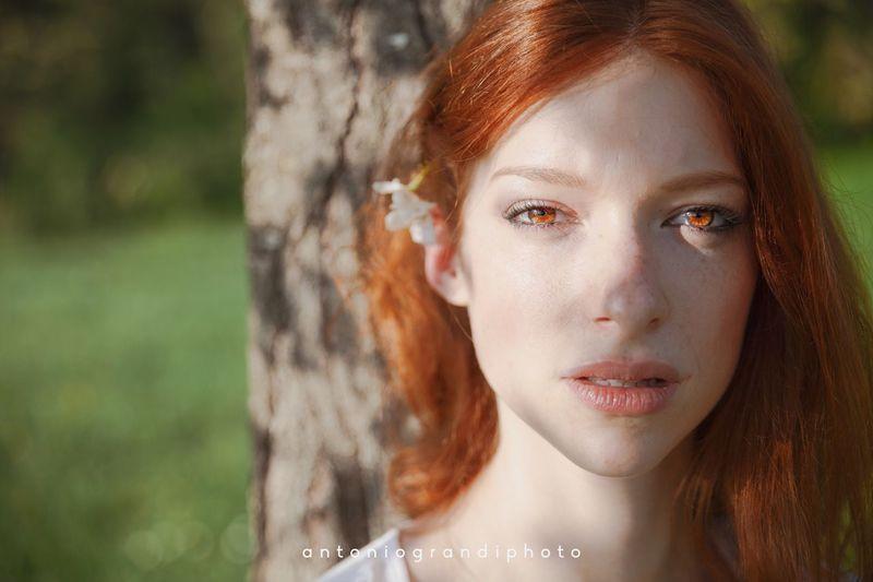 Redhead Focus