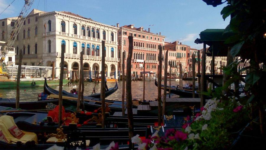 Grandcanal Venezia #venice Seaside Lagoon Taking Photos Travel Exploring Gondole In Venice Adriatic Sea Summertime