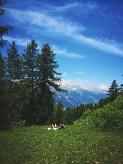 Relaxing in the mountain Tree Men Togetherness Women Sky Grass Hiker Tranquility Mountain Mountain Range Remote Countryside Calm