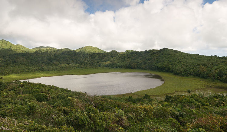 Grenada island - Grand Etang National Park - Grand Etang Lake and crater Antilles Beauty In Nature Caribbean Cloud - Sky Crater Grand Grass Grenada Island Lake Landscape Mountain National Nature No People Outdoors Park Reserve Scenics Sky Tranquility Tree Volcano Water étang