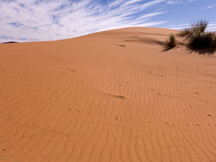 Hike through the Sahara desert in the south of Morocco Desert Sand Land Sky Scenics - Nature Climate Arid Climate Landscape Environment Sand Dune Day Beauty In Nature Tranquil Scene Nature Non-urban Scene Tranquility Outdoors Sahara Morocco Erg Chebbi Africa Dunes Pattern Cloud - Sky Remote