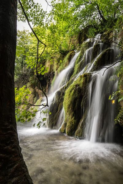 My Own Private Waterfall. Waterfall Scenics Tree Nature Beauty In Nature Idyllic Tranquil Scene No People Tranquility Travel Destinations Water Outdoors Vacations Motion Croatia ♡ Croatia Hrvatska Plitvice National Park Plitvice Lakes National Park Plitvickajezera Plitvicka Jezera Nacionalni Park Plitvice Long Exposure Slow Shutter Nature