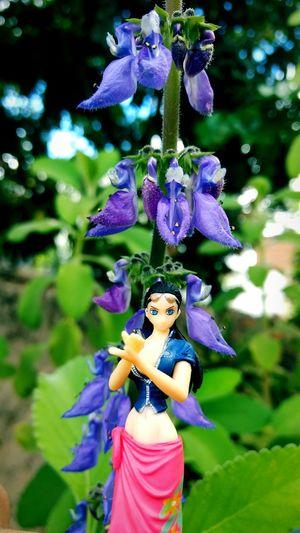 Nico. Nature Women OnePiece Flower NicoRobin Figures