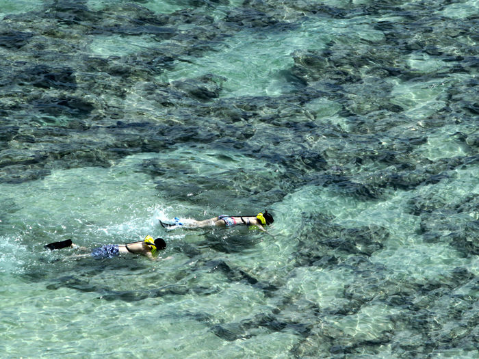 High angle view of couple snorkeling in sea