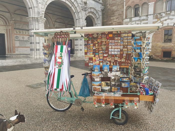 Italy Bike Italia Viagem Lugares Lucca Italy Dog Love Hanging Variation Architecture Built Structure
