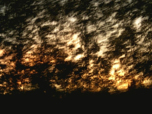 Need For Speed Art In Nature Motion Blur Sunset Light And Shadow Abstract Art Abstract Nature Orange Abstract Sky Sunlight ☀ Treescape Tree Silhouette Dark Tree Branches Tree Art Artist Color Paint Colourful Silhouette Black