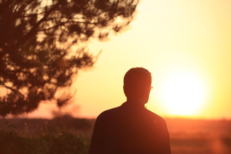 Rear View Of Man Against Sky During Sunset