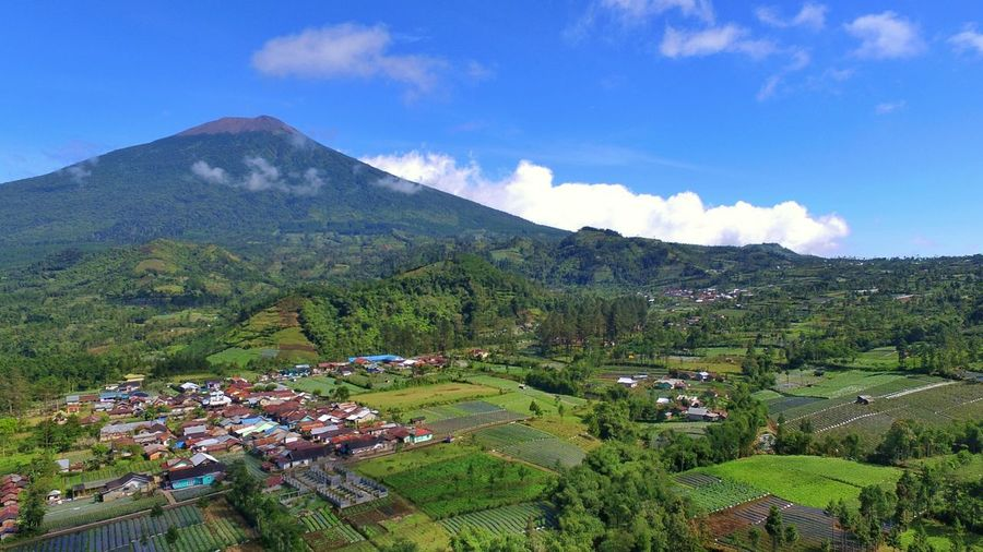 mount slamet Mountain Cloud - Sky Scenics Landscape Tree Mountain Range Nature Outdoors Sky Beauty In Nature Day No People Mountain View Mount Central Java Landscapes Blue Nature Drone Shot Droneoftheday Drone Photography Dronestagram DJI Phantom 3 Professional Djiphantom DJI Phantom 3 An Eye For Travel