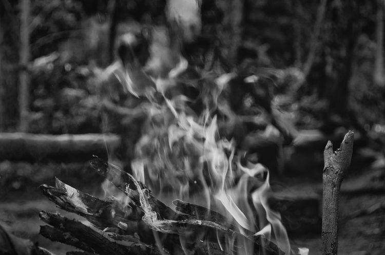 Fogueira. Bonfire Fogueira Indian Nature Rio Silveira Indian Reservation Travel Photography Aldeia Guarani Beauty In Nature Black And White Blurred Motion Close-up Day Guarani Indian Guarani Village Indigenous Culture Indigenous Reservation Indio Guarani Lifestyles Motion Nature Praia De Boraceia Pretoebranco Reserva Indigena Rio Silveira