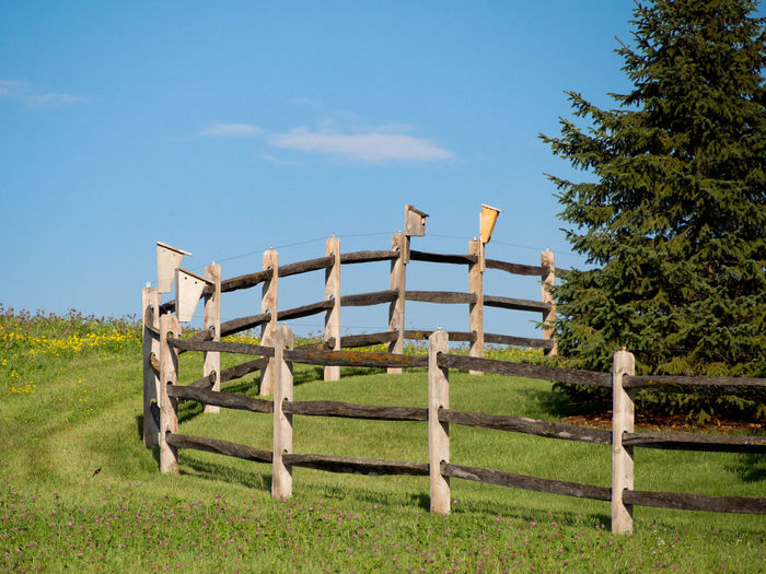 Fence line in a rural community outside Minneapolis. Beauty In Nature Blue Cloud Cloud - Sky Fence Fences Field Grass Grassy Green Color Growth Landscape Nature No People Non-urban Scene Outdoors Pole Remote Scenics Sky Tranquil Scene Tranquility Wood - Material Wooden Wooden Post