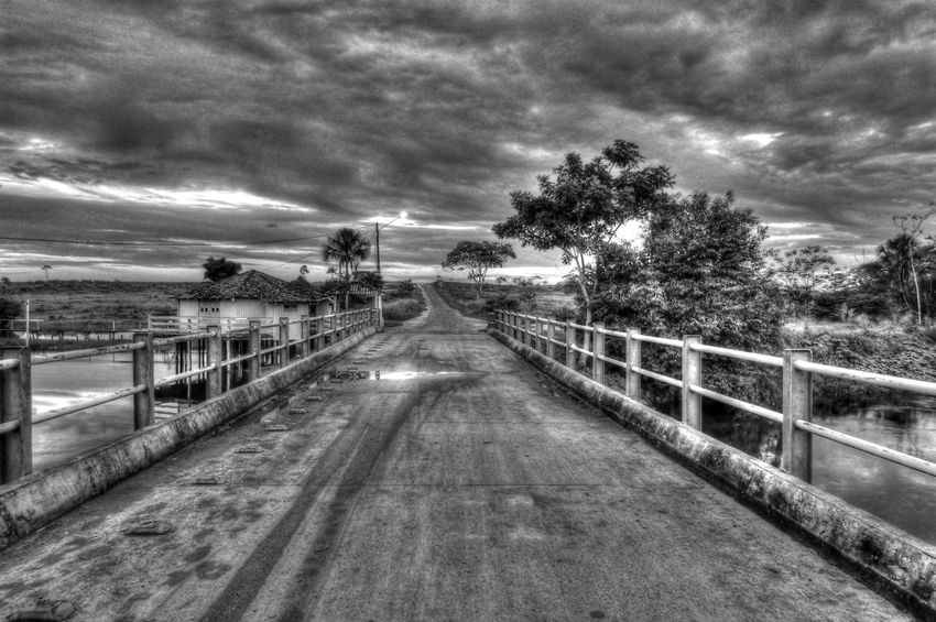 Nature Natureza Fotografia Photography Photo Photographer Pretoebranco Blackandwhite Black And White Blackandwhite Photography Paisagem Paisagemrural Paisagembrasileira Paisagemlinda Cloud - Sky Tree The Way Forward Railing Sky No People Outdoors