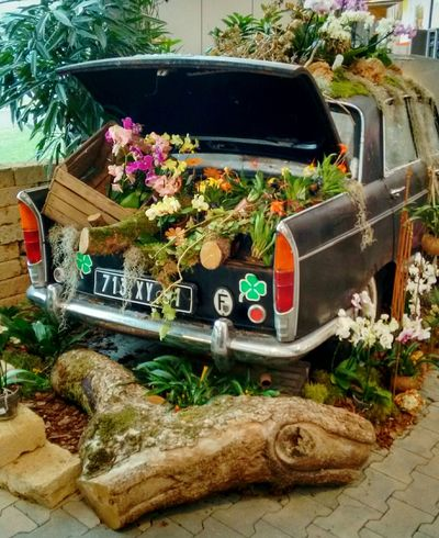 Lieblingsteil Car Transportation Flower No People Outdoors Day Nature Old And Beautiful Old Car Decoration Art Is Everywhere