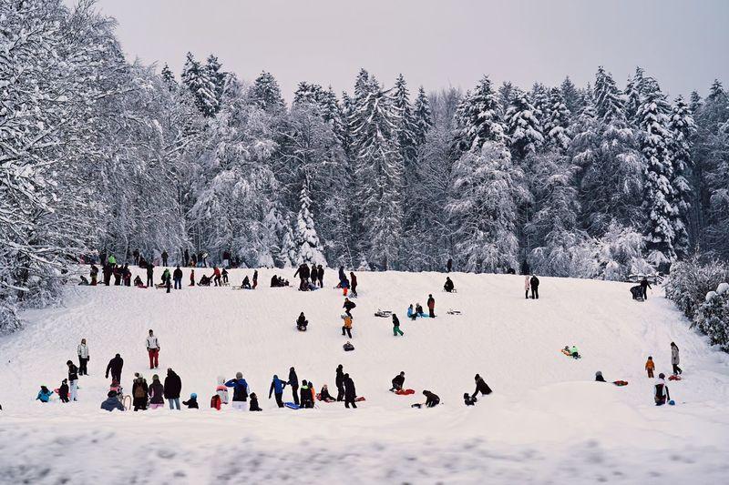 People having fun on winter day