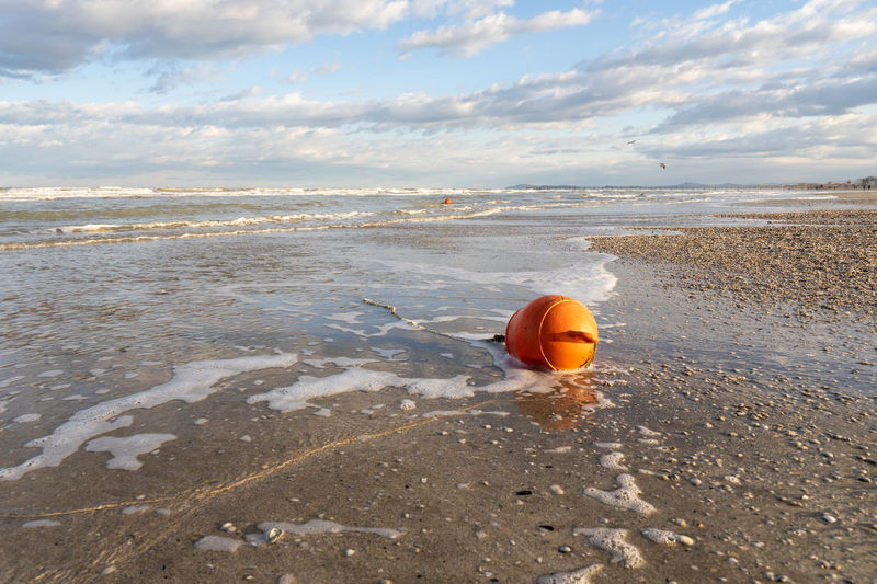 Buoy from the sea on the shore