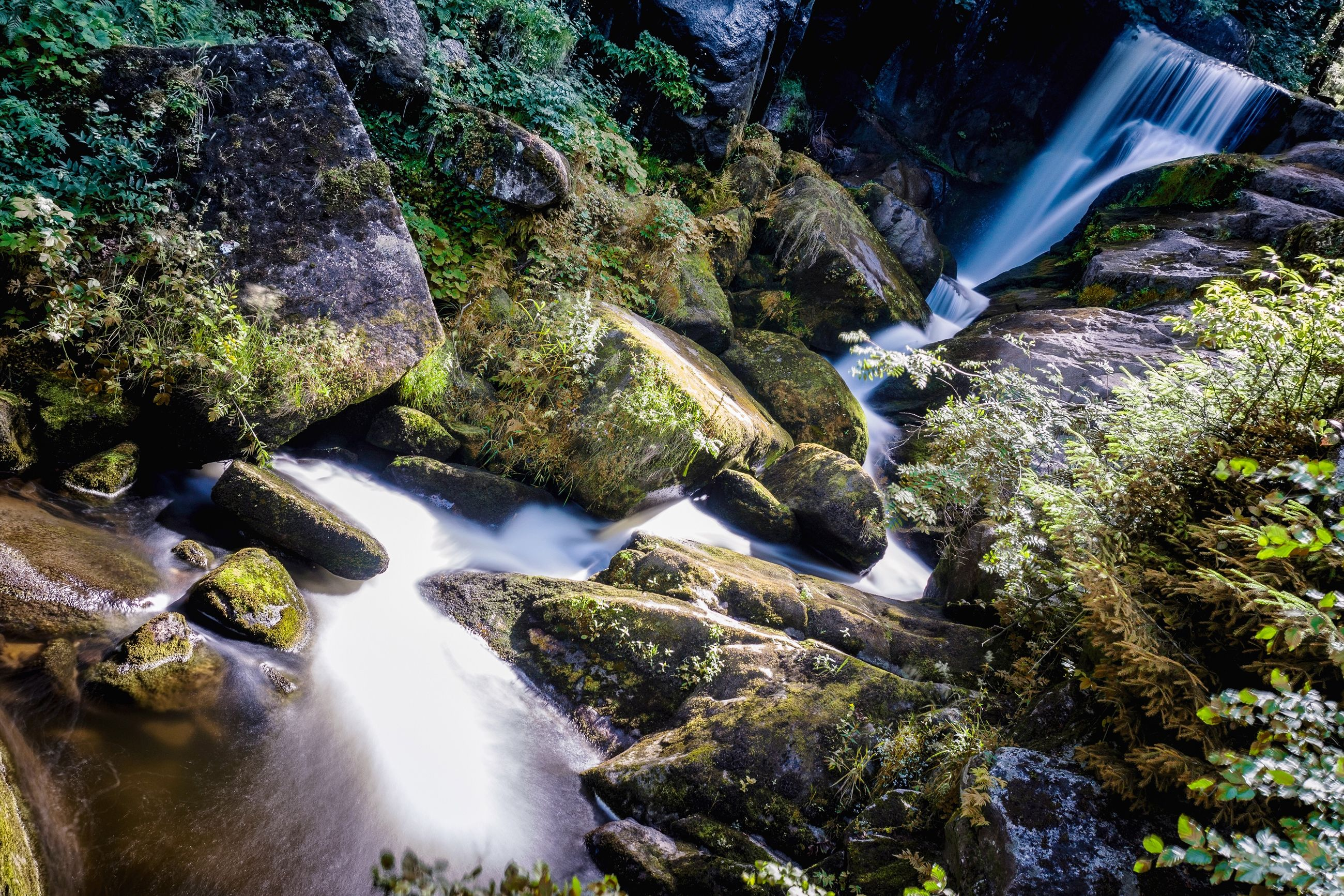 water, rock, scenics - nature, waterfall, flowing water, solid, rock - object, motion, long exposure, moss, blurred motion, beauty in nature, forest, nature, flowing, no people, day, river, tree, stream - flowing water, outdoors, falling water, purity, power in nature, running water