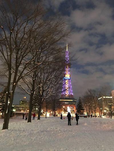 Illuminated christmas tree in city during winter at night