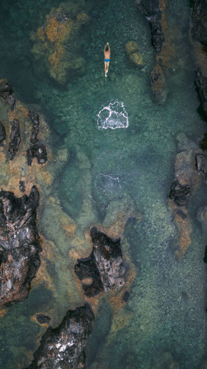 Aerial view of man swimming in sea