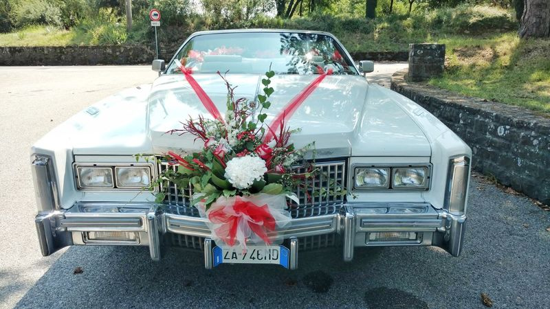 Wedding Cadillac The Still Life Photographer - 2018 EyeEm Awards The Photojournalist - 2018 EyeEm Awards The Street Photographer - 2018 EyeEm Awards EyeEm Selects No People Cadillac Car Wedding Flowers Beutiful  Flower Water Land Vehicle Bouquet Car High Angle View
