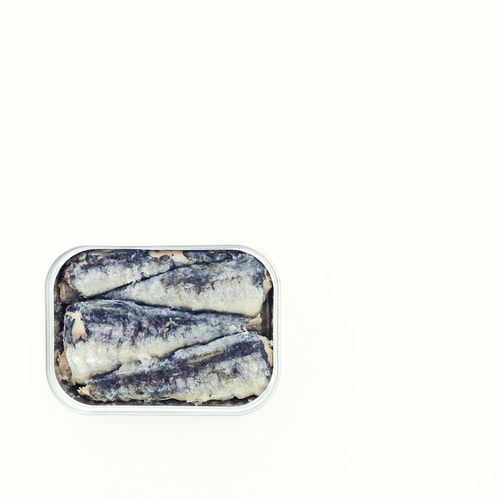 Minimalist picture of Sardines in a tin Can Fish Fish Art Food Food Art Healthy Healthy Eating Healthy Food Isolated White Background Minimalism Minimalist Oily Omega 3 Omega 3 Fatty Acids Omega 3 Oils Packed Sardine Sardines Sea Food Seafoods Simplicity Tight Tin White Background