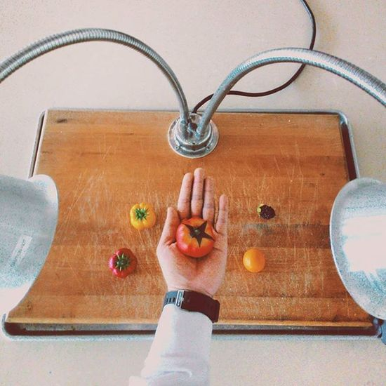Kalian akan layu jika kedua lampu ini ku nyalakan 🍑🍓🍇🍏🍎 Fruits Heater Lamp Afternoon Hand Bellpeper Tomato Grapes