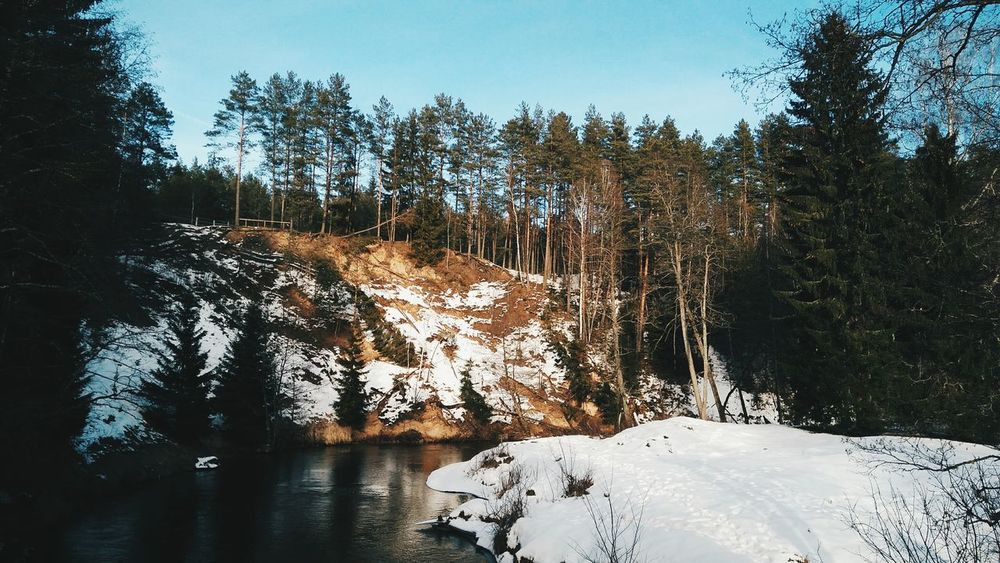 Winter in Lithuania // Tree Nature Sky Beauty In Nature Sunlight Tranquility Water Outdoors Forest View Sunny☀ Lithuania Nature <3 Lithuania Snow ❄ Travel Destinations Snow Covered Snow Day Travelphotography Wanderlust No People Landscape Beauty In Nature Winter Snow Tree Forest