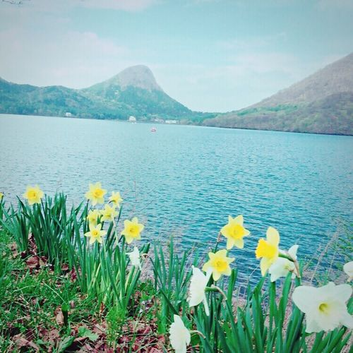群馬 榛名 榛名湖 湖 Lake Lake View Sky Flowers Gunma Japan