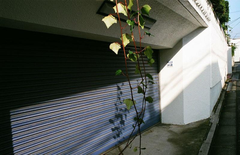 Umbrella against built structure