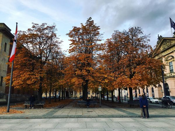 Tree Sky Real People Outdoors Day City Built Structure Autumn Building Exterior Architecture Women Men Nature One Person Berlin